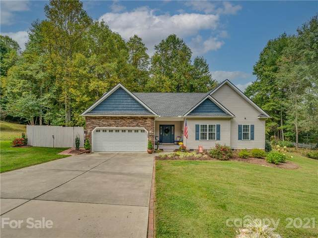 163 Oak Apple Lane, Hendersonville, NC 28792 (#3792001) :: The Premier Team at RE/MAX Executive Realty