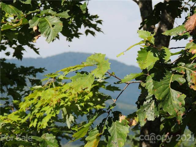 Lot # 86 Mountain Lookout Drive Lo86, Bostic, NC 28018 (#3792002) :: Mossy Oak Properties Land and Luxury