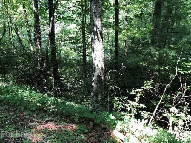 0 Bear Cove Circle #32, Bryson City, NC 28713 (#3792126) :: BluAxis Realty