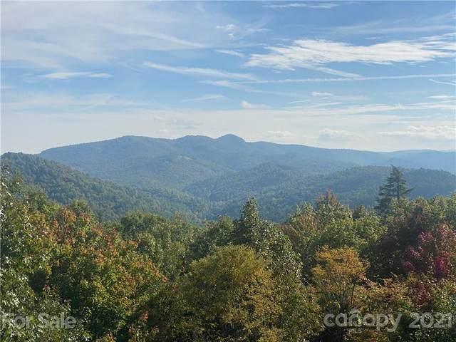 866 Pine Tree Road, Spruce Pine, NC 28777 (#3792202) :: High Vistas Realty
