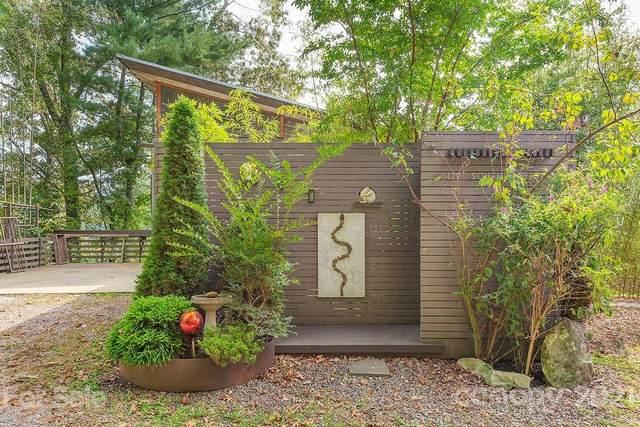 179 S Delano Road, Asheville, NC 28805 (#3792492) :: Briggs American Homes