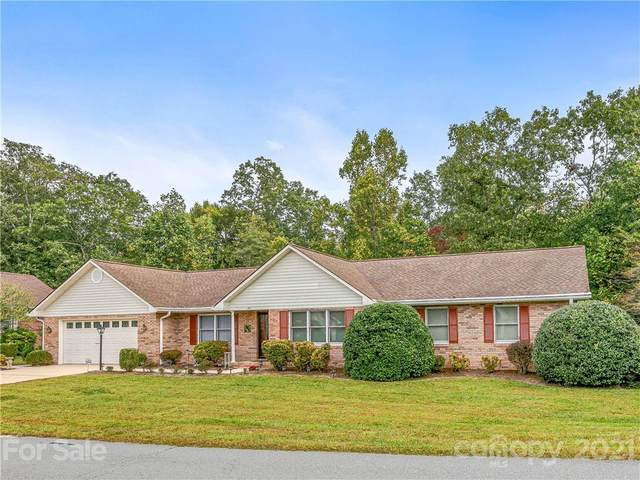 193 Mountain Valley Drive, Hendersonville, NC 28739 (#3792573) :: Homes Charlotte
