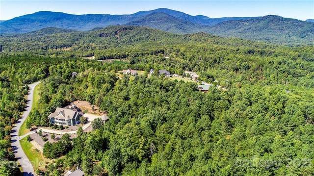 124 Stonecrest Parkway #17, Mill Spring, NC 28756 (#3792575) :: Mossy Oak Properties Land and Luxury