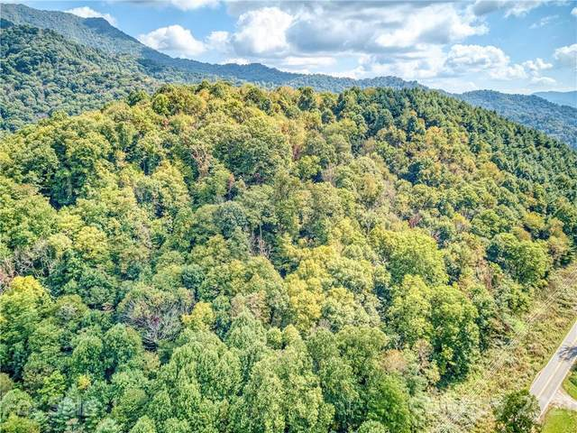 00 Rush Fork Road, Clyde, NC 28721 (#3792758) :: Homes with Keeley | RE/MAX Executive