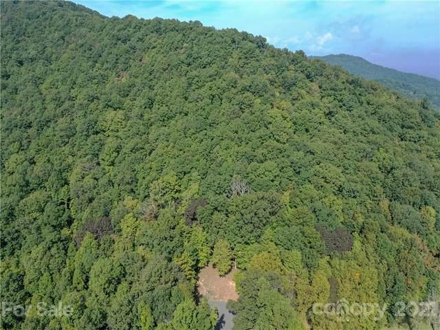 54 Ashewood Ridge Drive, Candler, NC 28715 (#3792869) :: LePage Johnson Realty Group, LLC