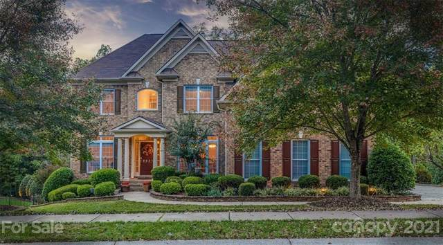 8931 N Dorchester Trace, Indian Land, SC 29707 (#3792914) :: Briggs American Homes