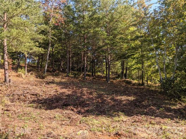 0 Willow Top Lane #312, Lake Lure, NC 28746 (#3793029) :: Mossy Oak Properties Land and Luxury