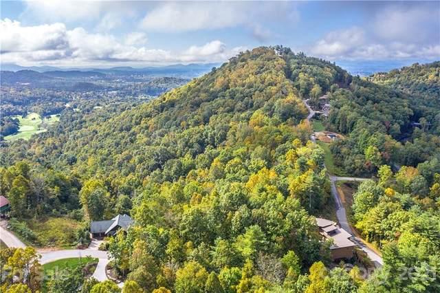 14 Villa Nova Drive #33, Asheville, NC 28804 (#3793145) :: Mossy Oak Properties Land and Luxury