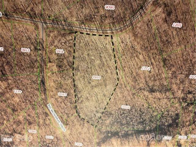 000 Forest Country Drive #17, Marion, NC 28752 (#3793375) :: High Vistas Realty