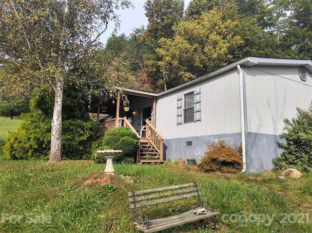 670 Lower Mountain Creek Road, Robbinsville, NC 28771 (#3793383) :: High Performance Real Estate Advisors