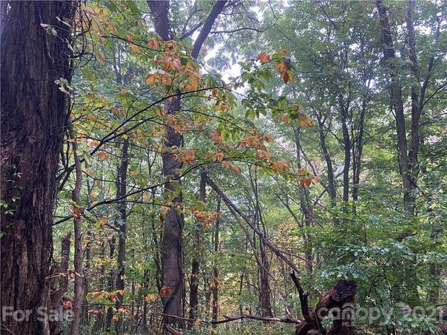 TBD Summit Ridge Trail, Hot Springs, NC 28743 (#3793659) :: High Vistas Realty