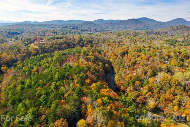 158 Riverbend Forest Drive #15, Asheville, NC 28805 (#3793828) :: Premier Realty NC