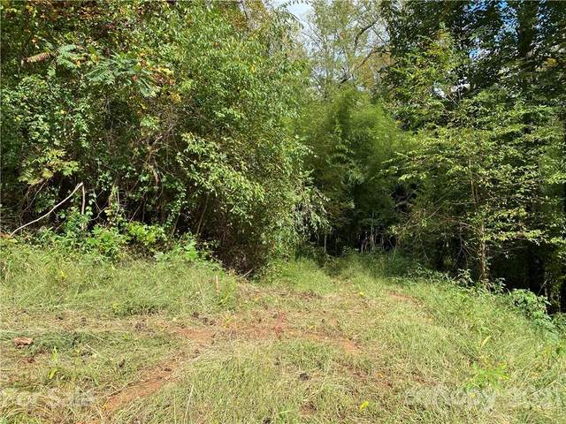 39 Vincennes Court #35, Asheville, NC 28804 (#3793913) :: Mossy Oak Properties Land and Luxury
