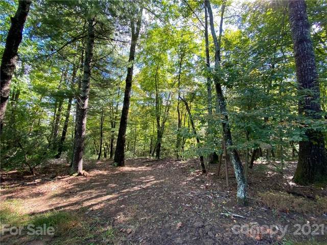 80 Powder Creek Trail #32, Arden, NC 28704 (#3794673) :: Homes Charlotte