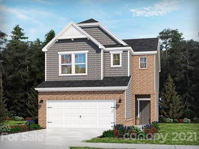 125 Ravensara Avenue, Fort Mill, NC 29715 (#3795222) :: High Performance Real Estate Advisors