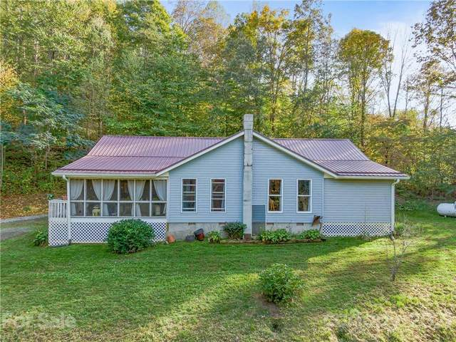 676 Henry Worley Lane, Marshall, NC 28753 (#3795280) :: Homes with Keeley | RE/MAX Executive