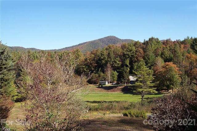 1959 Jackson Town Road, Spruce Pine, NC 28777 (#3795291) :: The Premier Team at RE/MAX Executive Realty