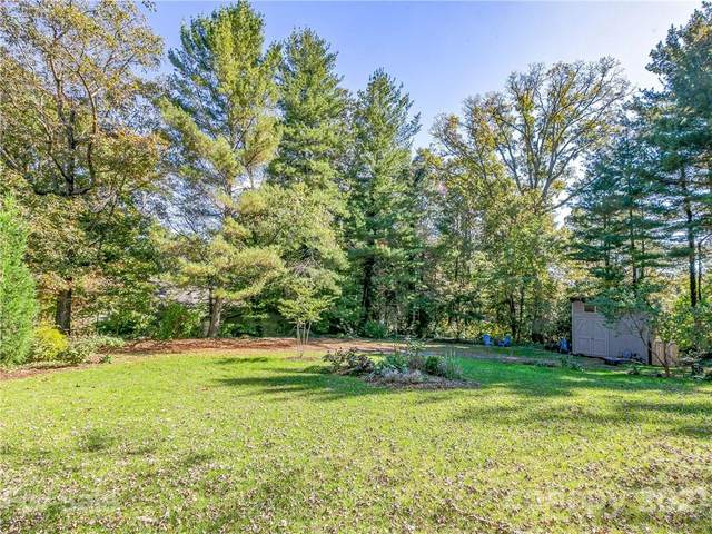 8 Digges Road, Asheville, NC 28805 (#3795298) :: Briggs American Homes