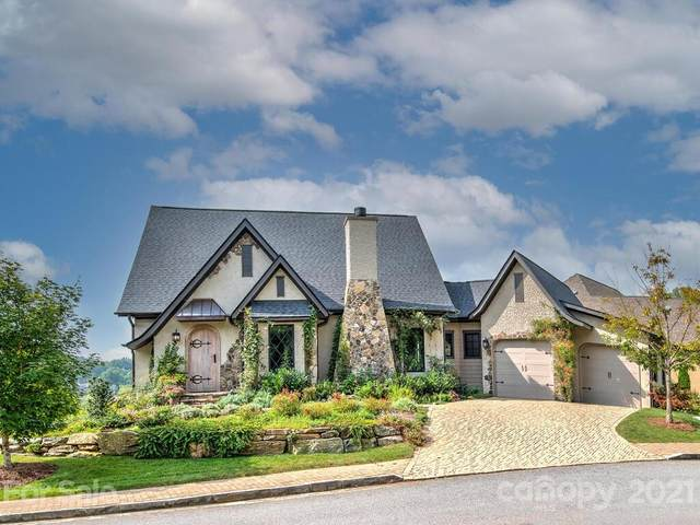 9 Snap Dragon Court, Asheville, NC 28804 (#3795646) :: Mossy Oak Properties Land and Luxury