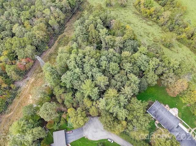 9999 Leibestraum Drive #5, Hendersonville, NC 28792 (#3795681) :: Modern Mountain Real Estate