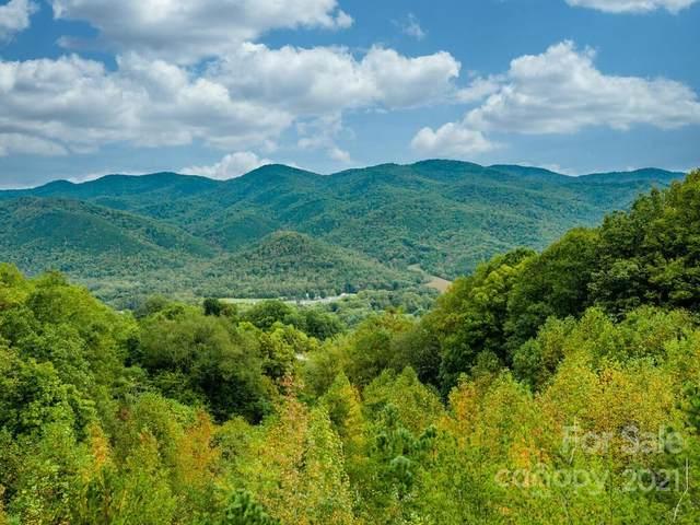 9999 Cogdills Drive, Hot Springs, NC 28743 (#3796148) :: Carmen Miller Group