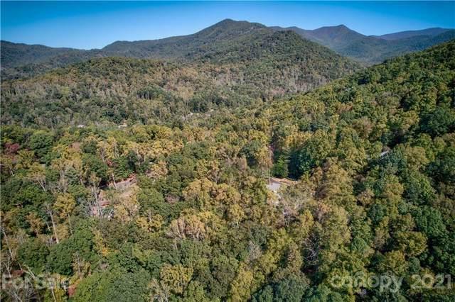 99999 Buffalo Trail #86, Asheville, NC 28805 (#3796313) :: Love Real Estate NC/SC