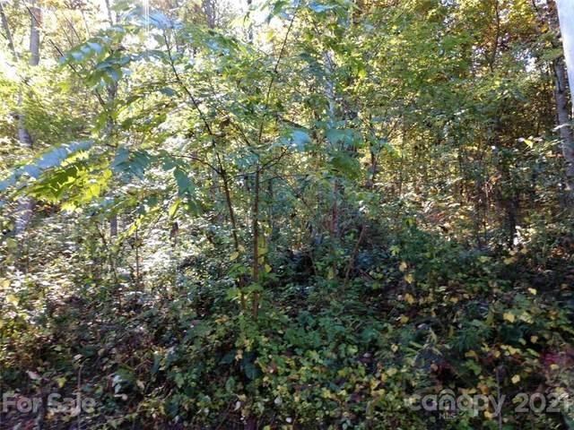 00 Appaloosa Trail #28, Waynesville, NC 28785 (#3796570) :: Ann Rudd Group