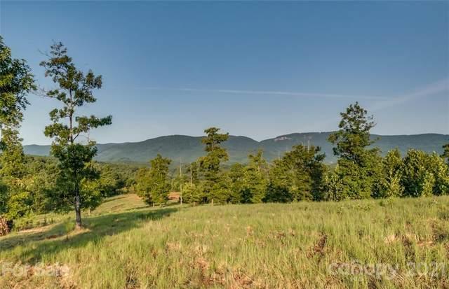 67 acres River Park Lane 21, 22, 23, Mill Spring, NC 28756 (#3796575) :: Robert Greene Real Estate, Inc.