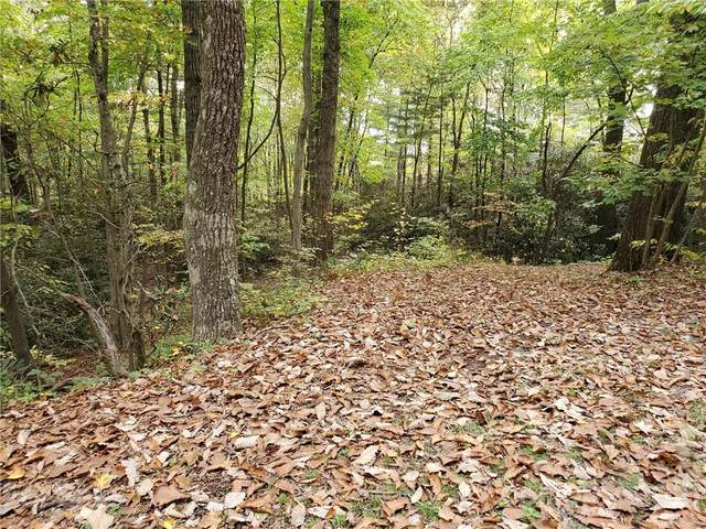 TRACT 2 Foxwood Drive, Hendersonville, NC 28791 (MLS #3796651) :: RE/MAX Journey