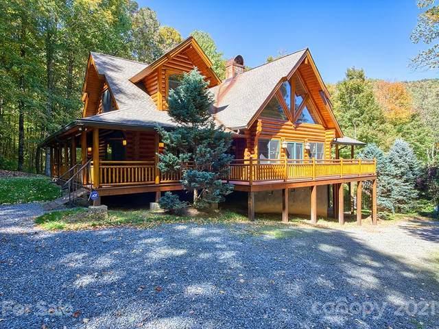44 Muscadine Lane 280 & 282, Waynesville, NC 28786 (#3796658) :: Lake Wylie Realty