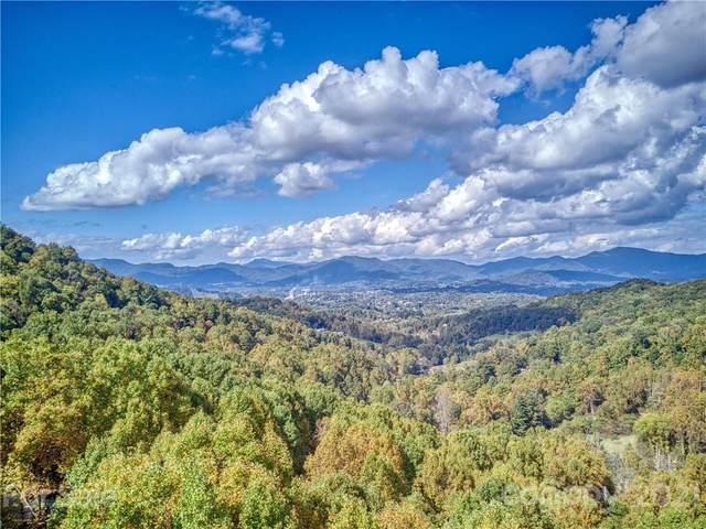 181 Pineneedle Way, Canton, NC 28716 (#3796683) :: Lake Wylie Realty