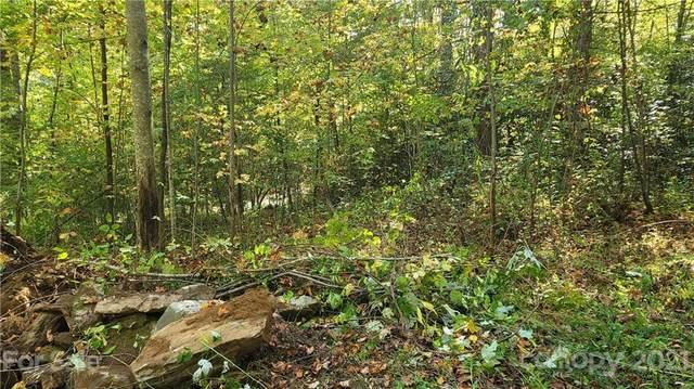 Lot 1 Carpenter Branch, Maggie Valley, NC 28751 (#3796709) :: Ann Rudd Group