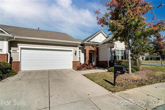 31450 Royal Tern Lane, Indian Land, SC 29707 (#3796903) :: Love Real Estate NC/SC