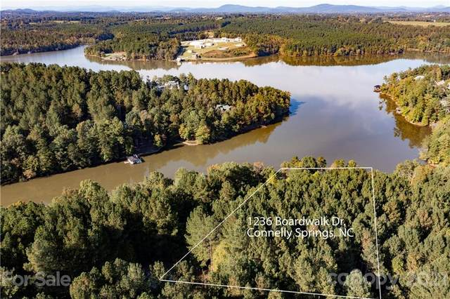 1236 Boardwalk Drive, Connelly Springs, NC 28612 (#3797466) :: The Allen Team