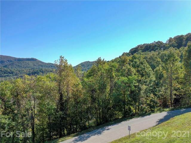 115 Mitchell View Drive, Hendersonville, NC 28792 (#3797542) :: Carolina Real Estate Experts