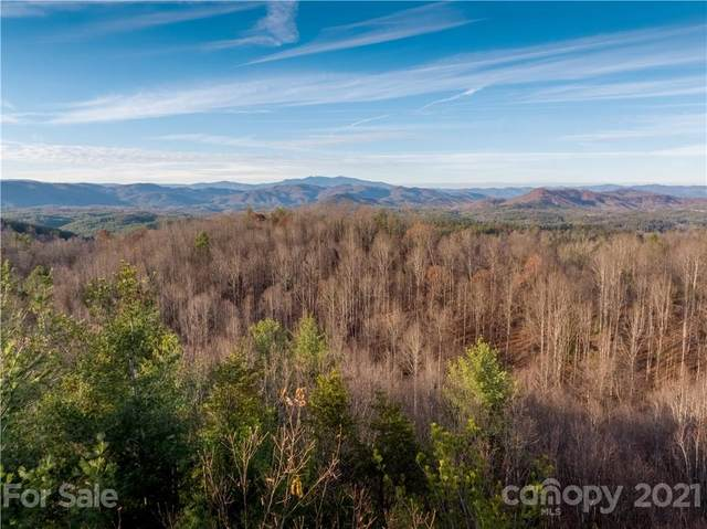 4894 White Oak Way #854, Lenoir, NC 28645 (#3797659) :: Todd Lemoine Team