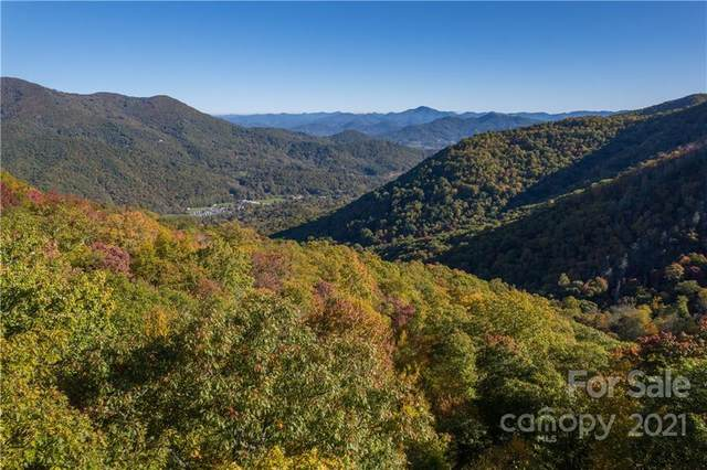 Lot 204 Nuthatch Lane, Maggie Valley, NC 28751 (#3797700) :: BluAxis Realty