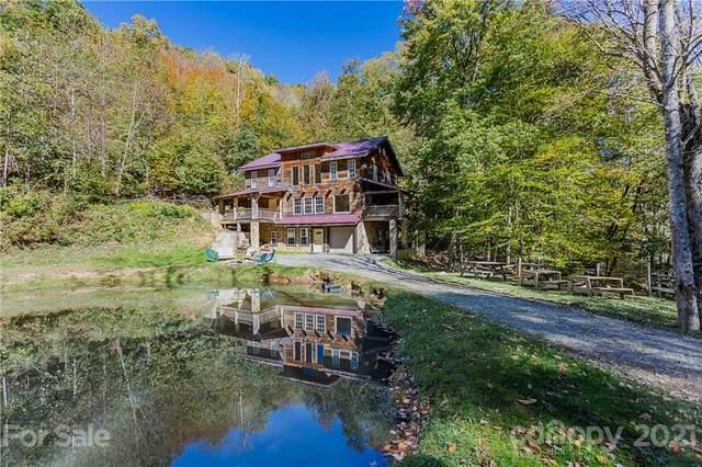 195 Black Bear Drive, Mars Hill, NC 28754 (#3797735) :: Cloninger Properties