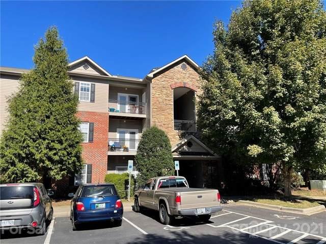 515 Appeldoorn Circle, Asheville, NC 28803 (#3797920) :: Cloninger Properties