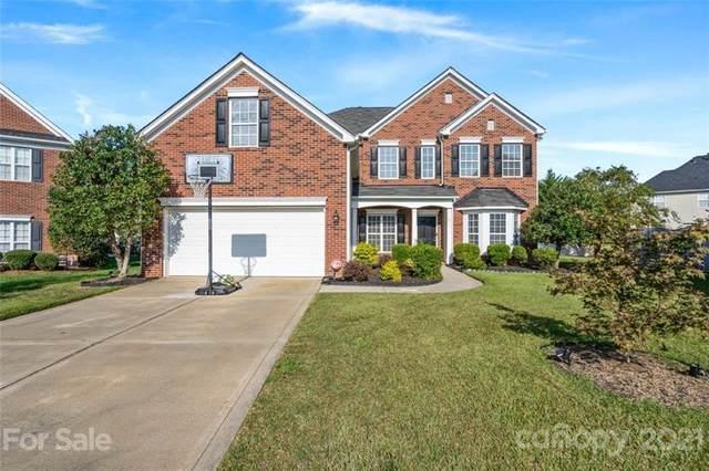11015 Southfield Drive, Charlotte, NC 28273 (#3797945) :: Carlyle Properties
