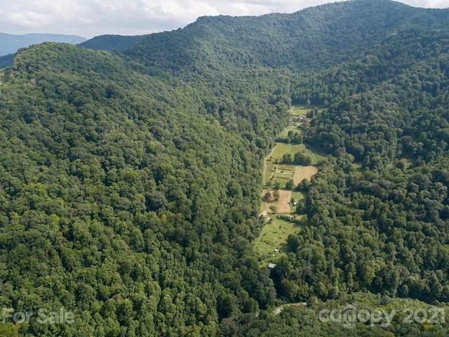 0 Beasley Cove Road, Hot Springs, NC 28743 (#3798104) :: Love Real Estate NC/SC