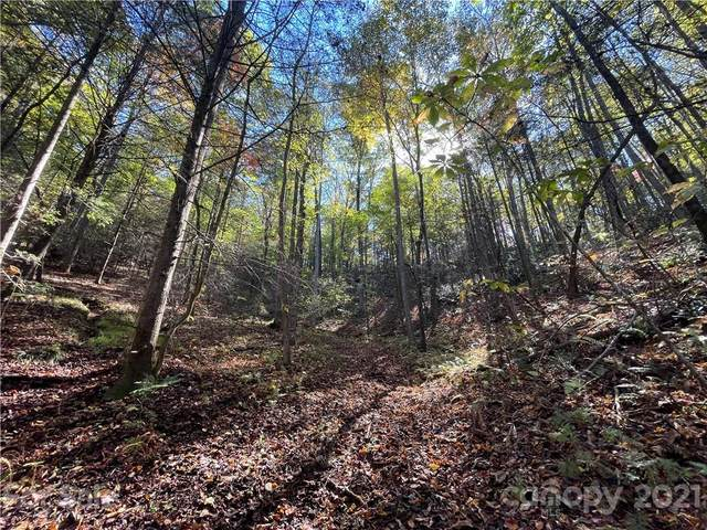 000 Henry Mccall Road Lot 3 & 4, Marion, NC 28752 (#3798209) :: Love Real Estate NC/SC
