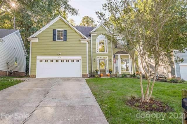 6113 Rosebriar Lane, Charlotte, NC 28277 (#3798317) :: DK Professionals