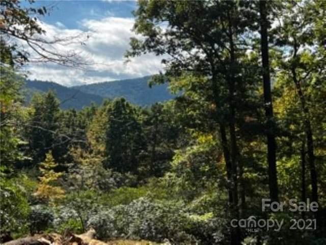 1720 Quiet Hills Lane #0136, Arden, NC 28704 (#3798391) :: The Zahn Group
