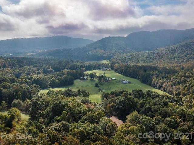 52 Smokey Ridge Trail, Arden, NC 28704 (#3798563) :: Homes Charlotte