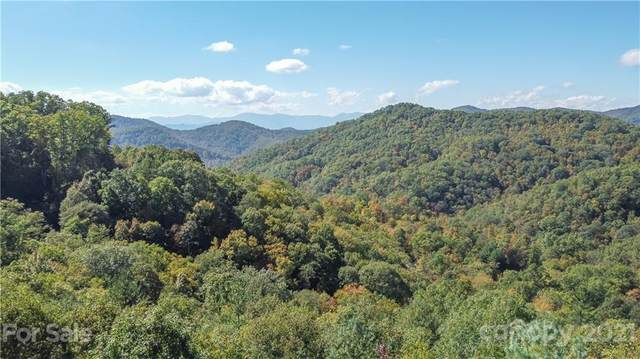 48 Preservation Trail #48, Sylva, NC 28779 (#3798844) :: Stephen Cooley Real Estate