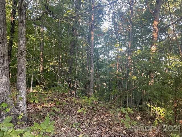 0 Tekakwitha Trail, Bostic, NC 28018 (#3799230) :: DK Professionals