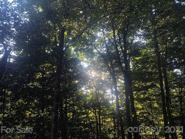 TBD Spruce Flats Road #39, Maggie Valley, NC 28751 (#3799233) :: Love Real Estate NC/SC