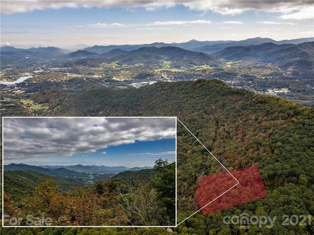 #240 Apple Creek Road, Waynesville, NC 28786 (#3799593) :: BluAxis Realty