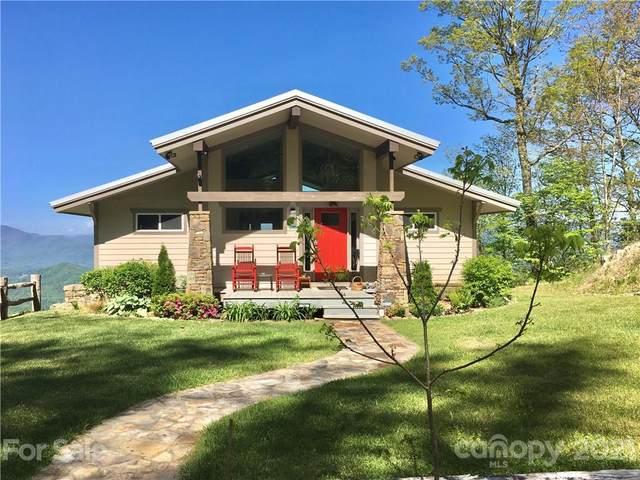 1135 Wonder View Drive, Bryson City, NC 28713 (#3799596) :: BluAxis Realty